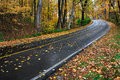 Curving blacktop road lush forested park rainy autumn day sharon woods southwestern ohio usa Stock Photo