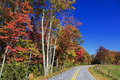 A curvy road in the country during the fall season Stock Image