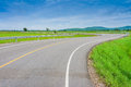 Curvy Road Of Fresh Green in country town Royalty Free Stock Photo