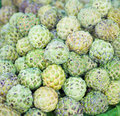 Custard apple close up of sugar or or annona squamosa Royalty Free Stock Photography
