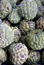 Custard apple (Fruta-do-conde) Stock Photography