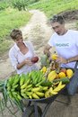 Customer buying direct from local farmer organic farming fresh vegetables and fruits Royalty Free Stock Photo