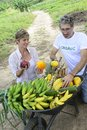 Customer buying direct from local farmer organic farming fresh vegetables and fruits Royalty Free Stock Images