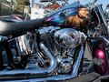 Customized Harley-Davidson motorcycle Royalty Free Stock Photos