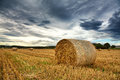 Cut field straw bales with dramatic sky Stock Photos