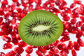 The cut fruit kiwi against garnet grains Royalty Free Stock Images