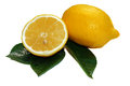 Cut lemon with leaves isolated Royalty Free Stock Image