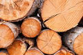 Cut logs Royalty Free Stock Photos