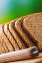 Cut rye bread and knife on breadboard on a background of green summer garden Stock Images