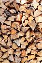 Cut wood, firewood for the winter. Cut logs fire wood and ready pieces of wood for heating wood. Royalty Free Stock Photo
