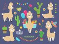 Cute alpaca. Funny cartoon llama, peru baby lamas and cacti flowers. Wild alpacas animals characters
