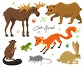 Cute animals for baby. Wild moose and deer, hare, wolf and bear. frog and fox. vintage world. Cartoon vector.