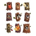 Cute animals and birds sitting in hollow of tree set, hollowed out old tree and fox, owl, wolf, raccoon, woodpecker and