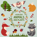 Cute animals set. Vector illustration. Royalty Free Stock Photo