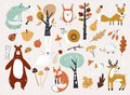 Cute Autumn Woodland Animals and Floral Forest Design Elements. Set of cute autumn cartoon characters, plants and food