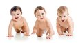 Cute babies toddlers crawling smiling weared diapers isolated on white Royalty Free Stock Photography