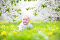 Cute baby in a blooming spring apple garden Royalty Free Stock Photo