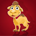 Cute baby camel Stock Photography