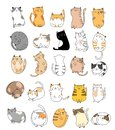 Cute baby cats cartoon hand drawn style,for printing,card, t shirt,banner,product.vector Royalty Free Stock Photo