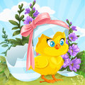 Cute baby chick just hatched from an easter egg on a green lawn with flowers Royalty Free Stock Photos