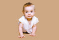 Cute baby crawls on background Royalty Free Stock Photography
