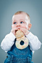 Cute baby eating a toy over grey background Stock Image