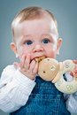 Cute baby eating a toy over grey background Royalty Free Stock Photo