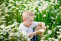 Cute baby in a field with daisies. A boy sits in a field with camomiles. Beautiful nature with flowers. The child spends time Royalty Free Stock Photo