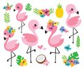 Cute Baby Flamingos and Tropical Flowers Vector Illustration