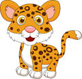 Cute baby jaguar cartoon illustration of Royalty Free Stock Image
