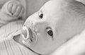 Cute baby with pacifier lying in a cradle black and white Stock Photography