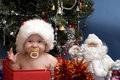 Cute Baby in red hat in front of Christmas Tree Stock Image