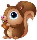 Cute baby squirrel cartoon a holding acorns