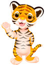 Cute baby tiger cartoon waving illustration of Stock Photos