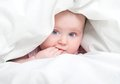 Cute baby under a blanket in bed Stock Images