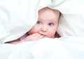 Cute baby under a blanket in bed Royalty Free Stock Photos