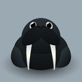 Cute baby walrus cartoon design Stock Photo