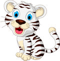 Cute baby white tiger posing illustration of Royalty Free Stock Photography