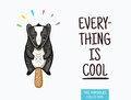 Cute badger popsicle illustration. Vector ice cream Royalty Free Stock Photo
