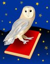 Cute barn owl, symbol of wisdom, sitting on a red book. Royalty Free Stock Photo