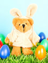 Cute bear as easter bunny with eggs Royalty Free Stock Photo