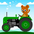Cute bear driving an old tractor Royalty Free Stock Images
