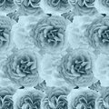 Cute beautiful pale roses. Seamless floral photo background. Digital mixed media artwork for wrapping paper, wallpaper design, Royalty Free Stock Photo