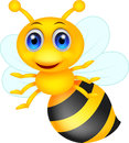 Cute bee cartoon illustration of Stock Photo