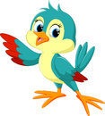 Cute bird cartoon vector illustration of on white background Stock Images