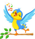 Cute bird singing vector illustration of Stock Photos