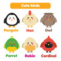 Cute birds icons set