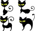 Cute black cat Royalty Free Stock Photos