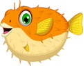 Cute blowfish or diodon holocanthus cartoon illustration of Stock Photos