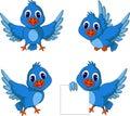 Cute blue bird cartoon collection Royalty Free Stock Photo